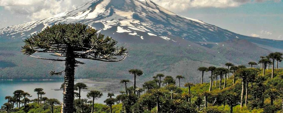 Temuco,Chile