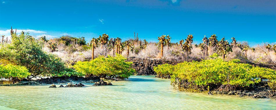 Islas Galápagos,Ecuador