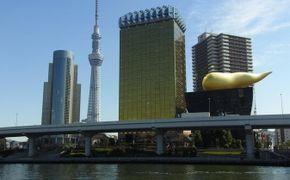 Escapada de medio d�a en Tokio