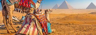 Viajar a las pirámides de Giza