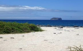 Gal�pagos Islas Encantadas - 5 Noches/6 D�as.