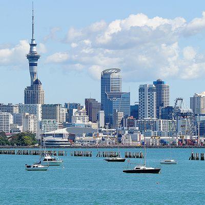 reputación primero calidad superior liberar información sobre OFERTAS EN VUELOS A NUEVA ZELANDA! Reservá tus Pasajes en ...