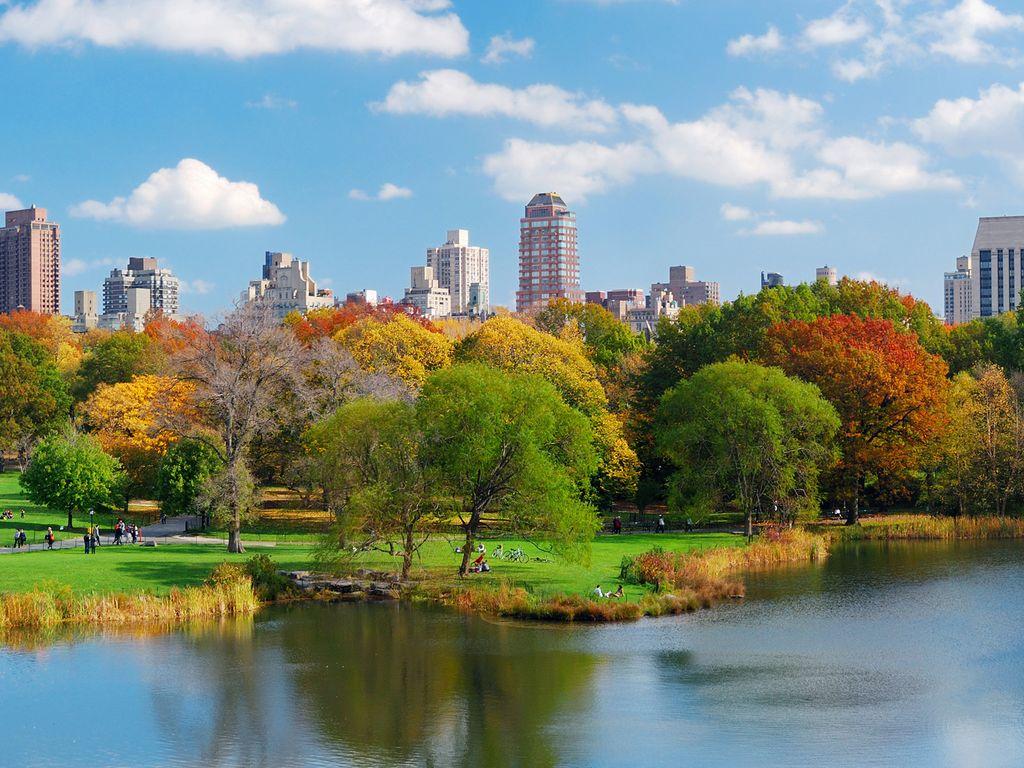 Vuelos a Nueva York desde Lima  438ff422981d