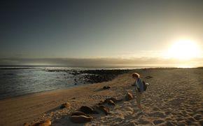 Excursi�n a Playa Tortuga Bay y Tour de Bah�